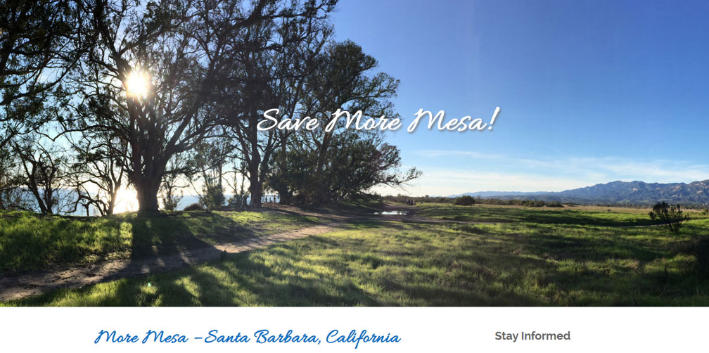 Santa Barbara Web Design - Save More Mesa!